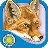 Red Fox at Hickory Lane on iTunes App Store