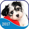 365 Dogs Page-A-Day Calendar 2017 on iTunes App Store